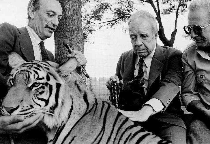 borges e o tigre